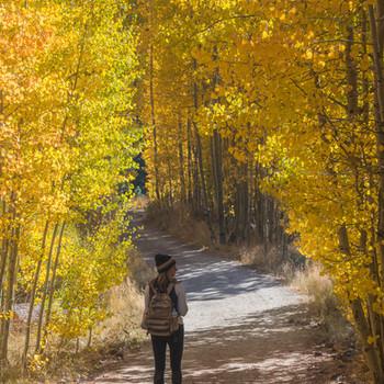 Fall colors at Spooner Lake, Lake Tahoe