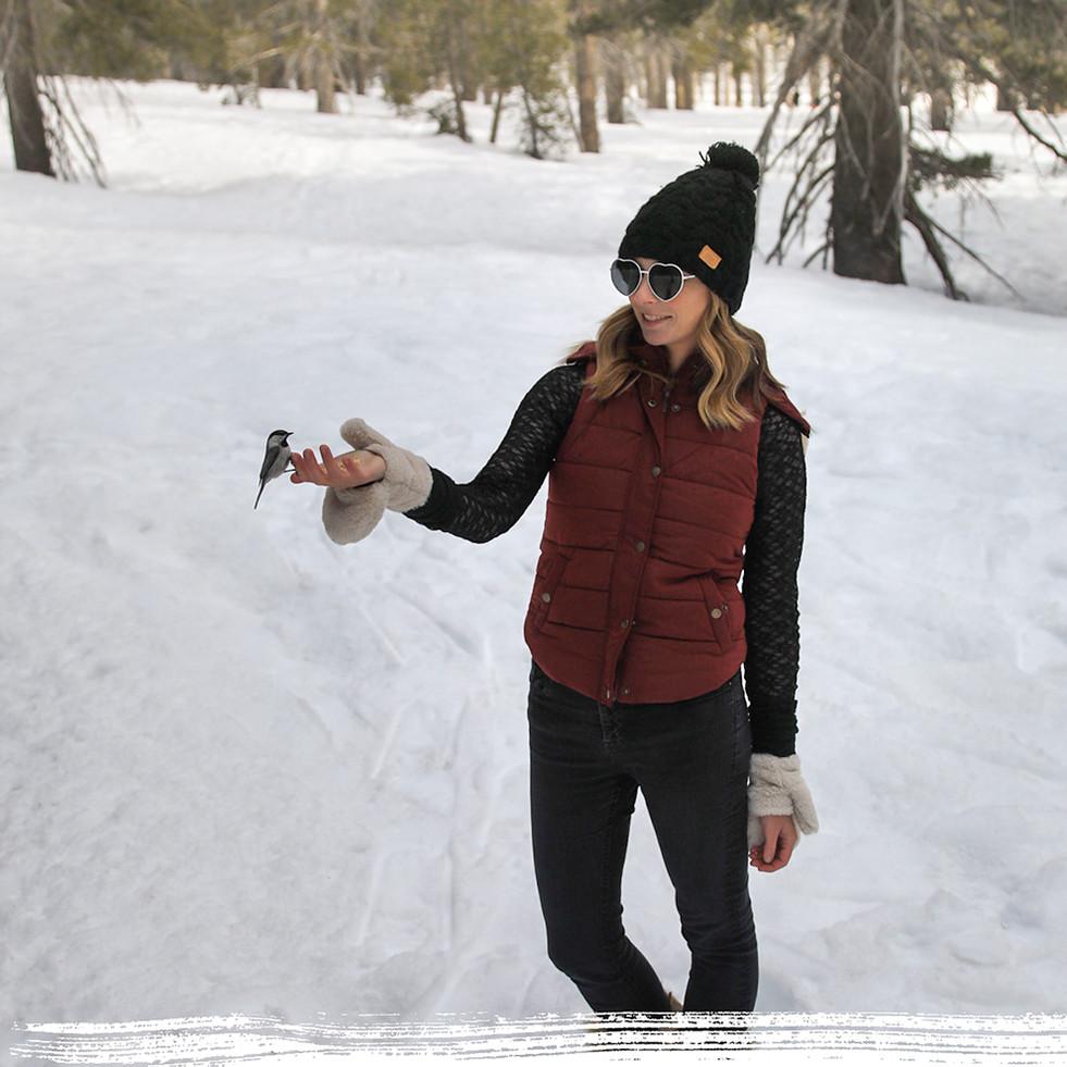 Lake Tahoe Winter Acivities.jpg