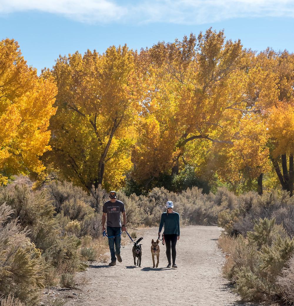 Carson River Park in the fall in Carson City Nevada
