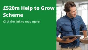 £520m Help to Grow Scheme