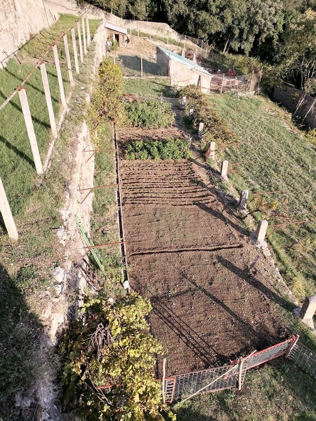 Terreni intorno al Convento San Mauro in ripristino