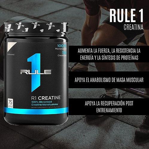 Rule 1 Creatina