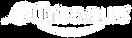 Nutrisaveurs-logo-blanc.png