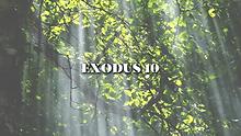EXODUSWIDE.png