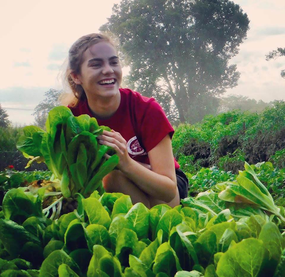Staff with Lettuce.jpg