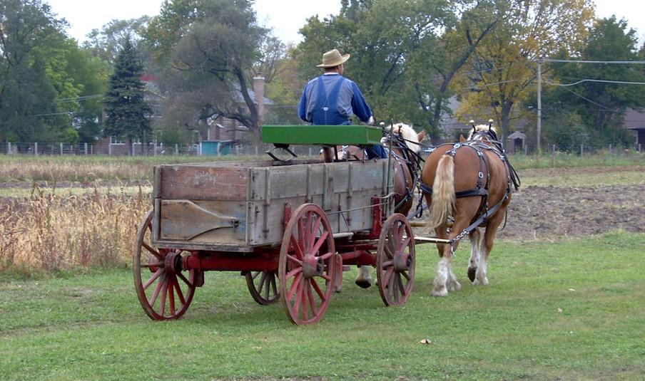 Driving Wagon.jpg