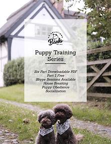 puppy series poster.jpg