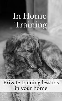 in home training graphic.jpg