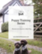Puppy Training Series Cover 2.jpg