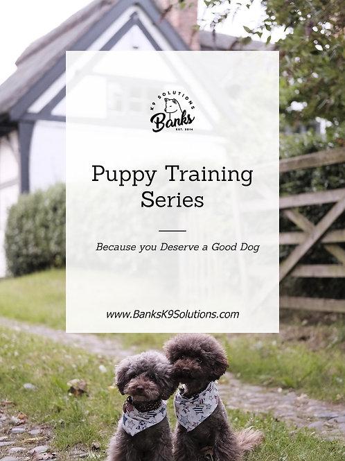 Puppy Training Series