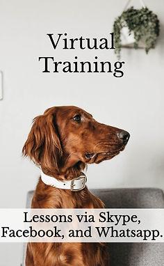 virtual training graphic.jpg