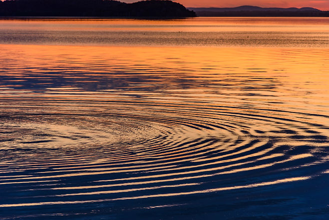 Concentric circles in the water of a lak
