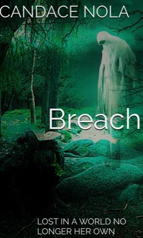 Breach-My Debut Novel