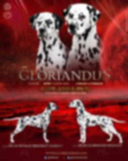 Gloriandus_G_litter_2020.jpg