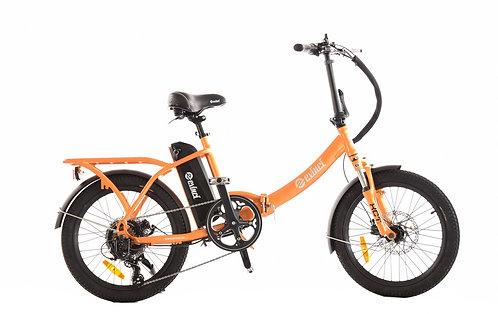 Robin Folding Bike