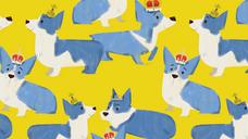 royal corgis