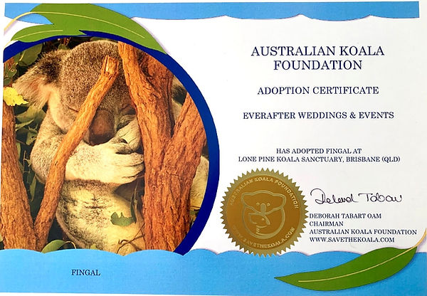 Everafter Weddings & Events proudly support the Australian Koala Foundation.