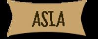 BOTON ASIA.png