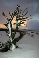 First Light Dartmoor
