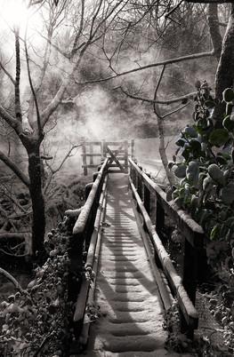 Bridge in the snow.jpg