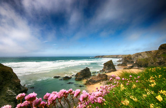 Seapinks at Bedruthan steps.