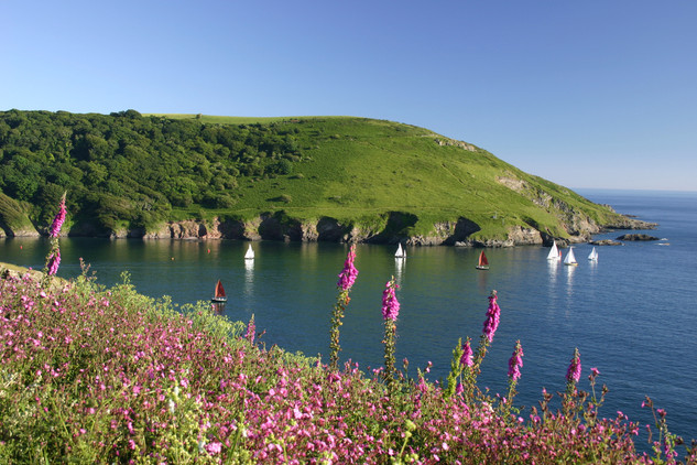 Mouth of Yealm, South Hams.