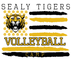 sealy volleyball  2018_edited