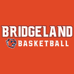 bridgeland basketball on orange