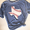 Thumbnail: Texas Baseball Y'all