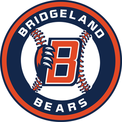 bridgeland bears baseball logo navy outline