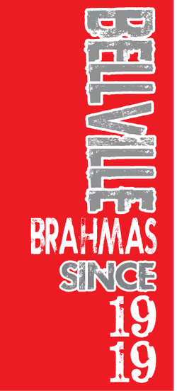 Bellville Brahmas up and down
