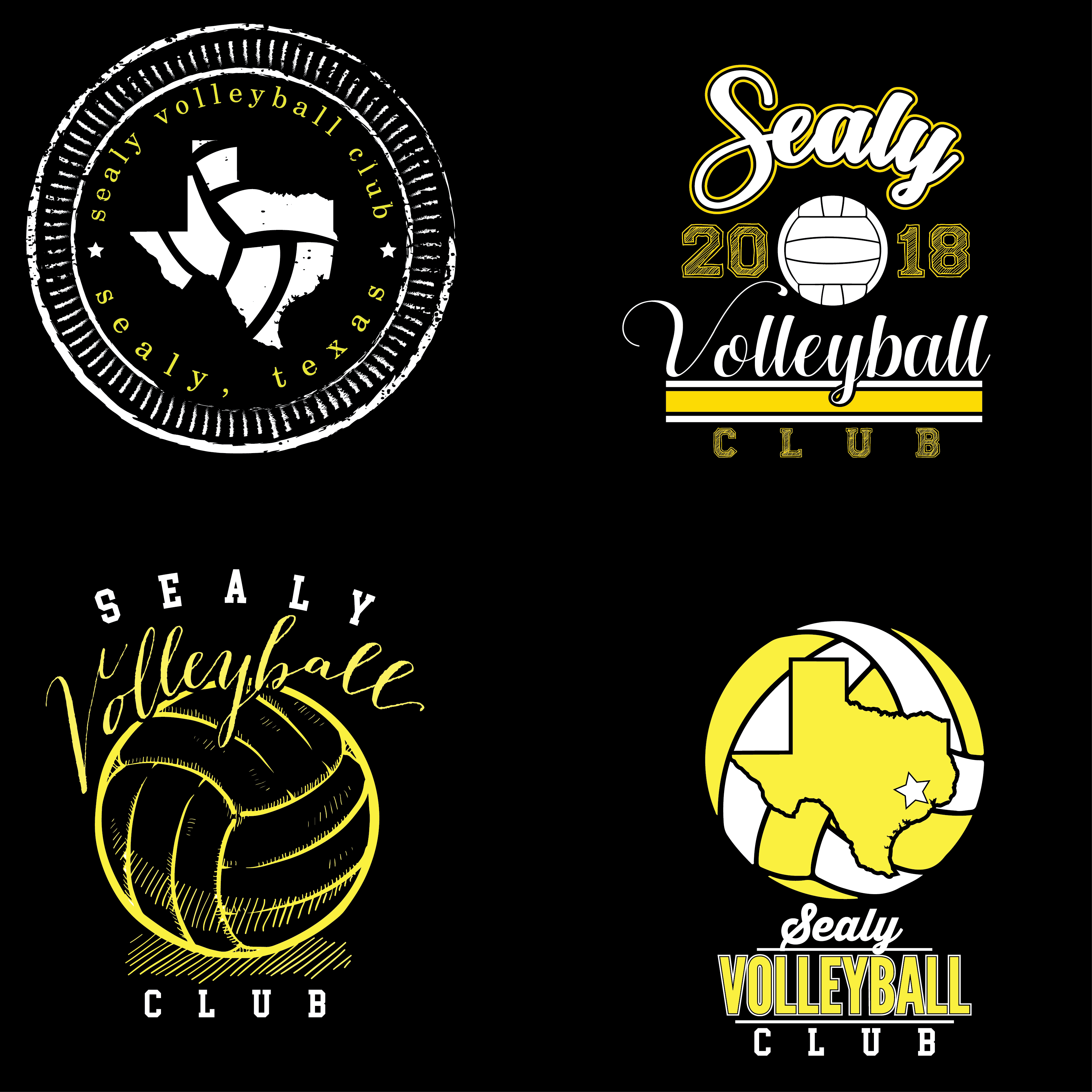 sealy volleyball club 2017