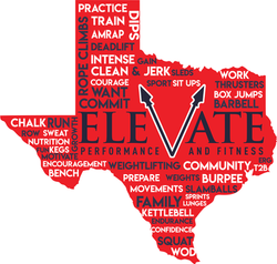 elevate texas back