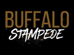 buffalo stampede2_edited
