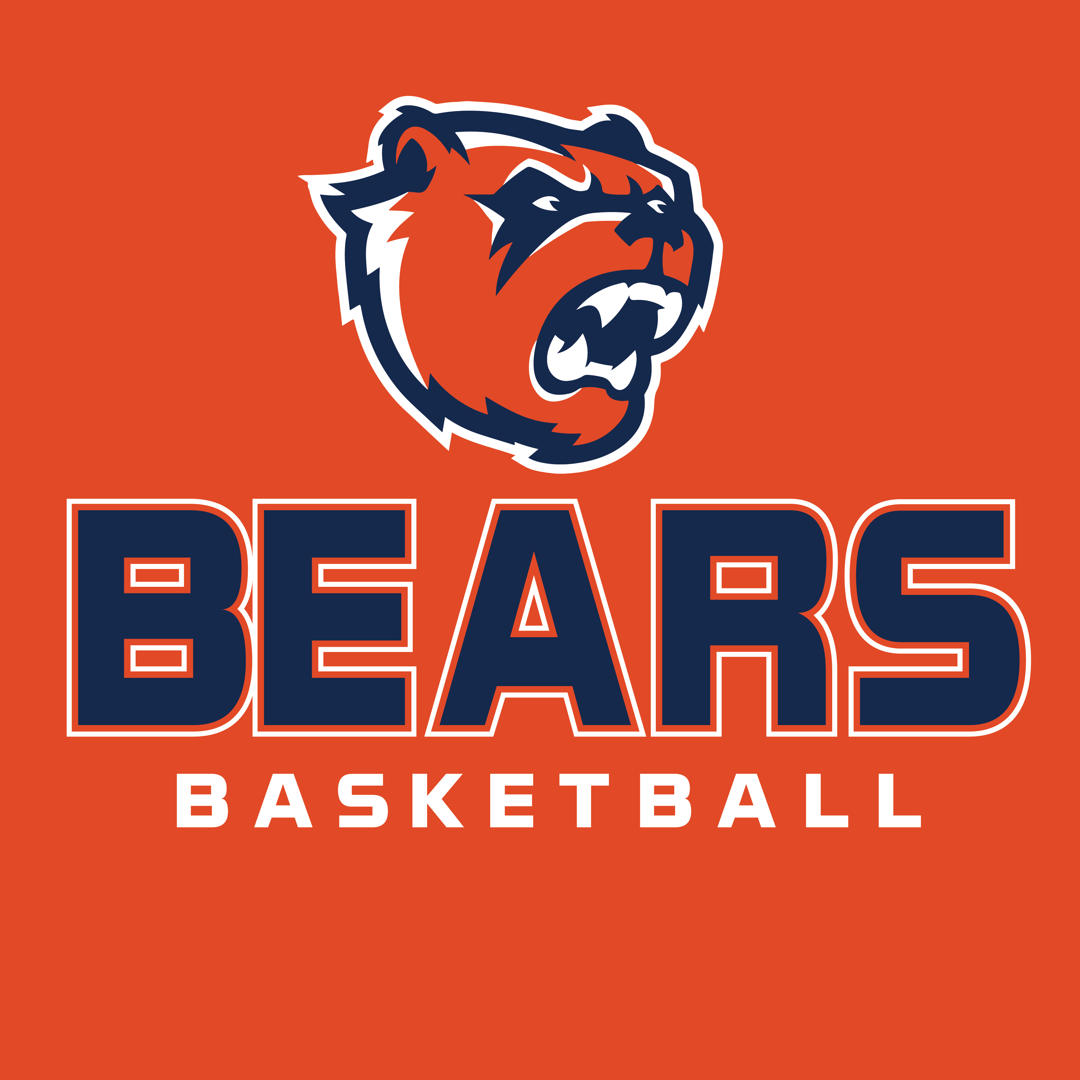 BEARS BASKETBALL (BIG HEAD)