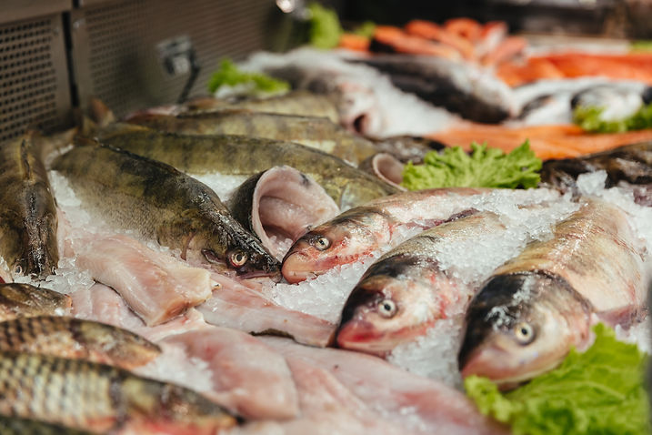 close-up-raw-fish-showcase.jpg