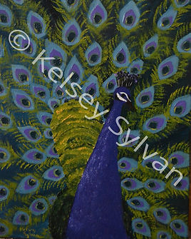 Peacocking.jpg