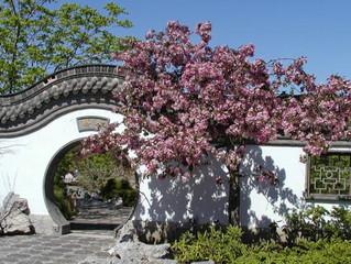 Le printemps débarque à Montréal et dans son Jardin Botanique