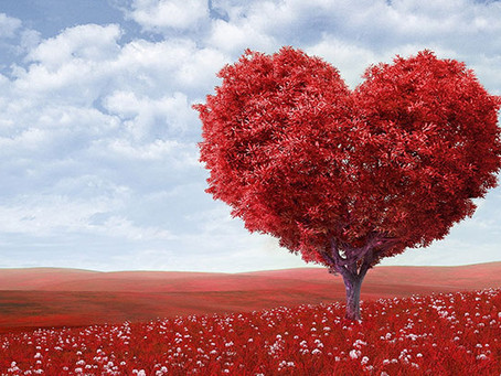 Ljubav je biće