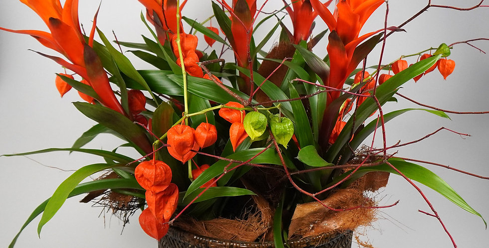 An exotic arrangement with bromeliads and decoration in a bamboo basket