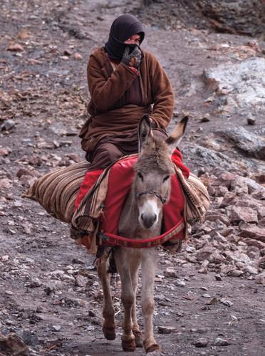 Berbers