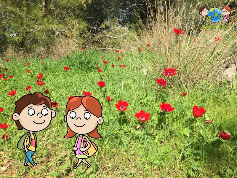 בן ואלה בטיול ביער שוהם המקושט כלניות