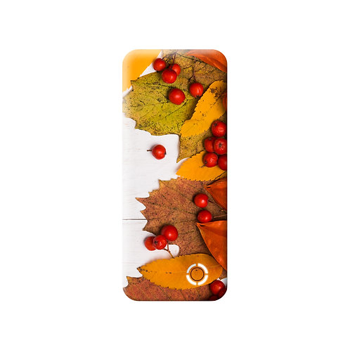 X.POWER Colors of Nature 10000mAh - Autumn