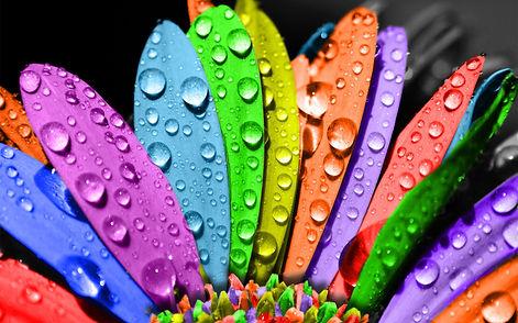 designs-creative-design-and-colourful-ob