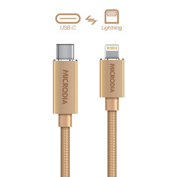 USB-C_to_Lightning - Gold