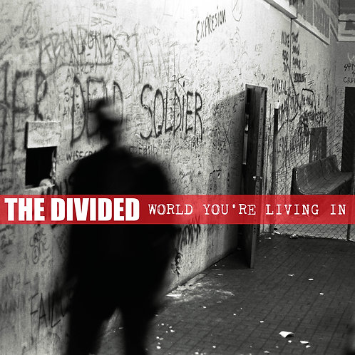 "THE DIVIDED ""world you're living in"" LP"