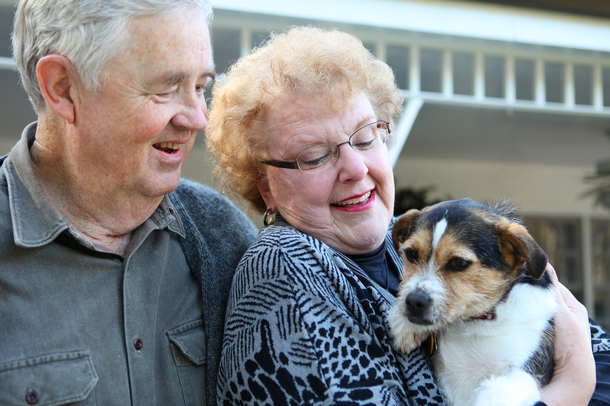 elderly-couple-with-dog-13305058