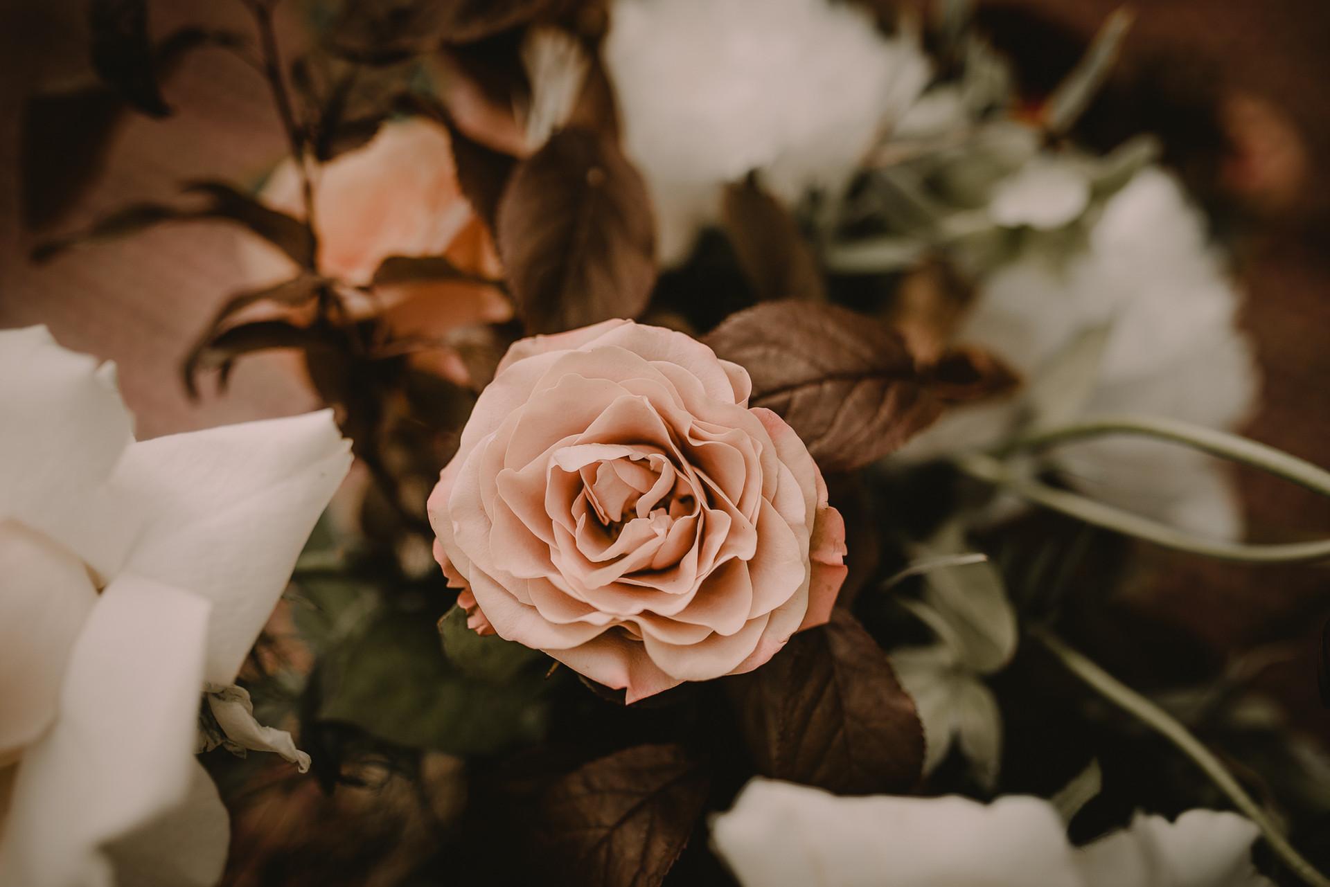 flowerpower (17 of 79).jpg