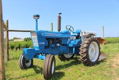 blue tractor.jpg