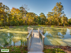 Oak Forest Events-24.jpg